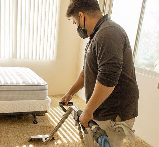 Sparkle Carpet Cleaning Services